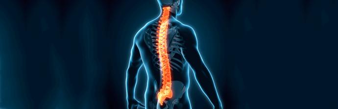 coluna-vertebral-31