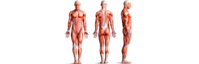 exercicio-pliometrico-3