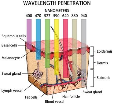 espectro-visivel-da-luz-1