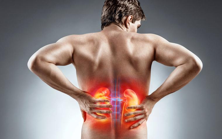 Doença Renal Crônica: conheça os principais tratamentos fisioterapêuticos