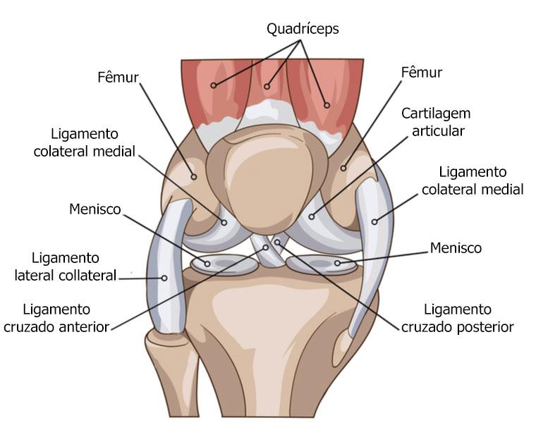 dor-no-joelho-pode-estar-relacionado-a-patologias-no-quadril