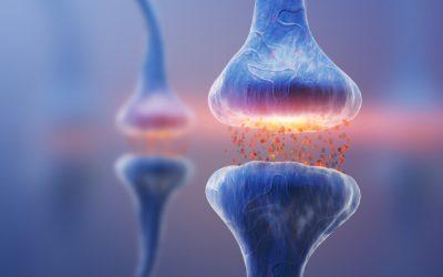 Fisioterapia Neurológica: atuação na Esclerose Múltipla