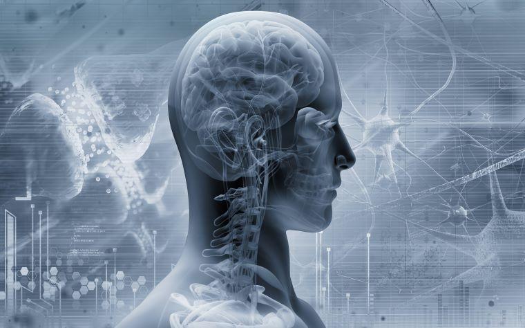 Por que devemos entender a complexidade do comportamento motor?