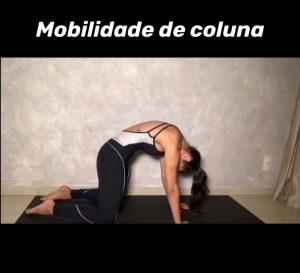 mobilidade-coluna-2