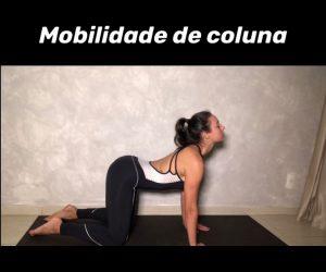 mobilidade-coluna-3