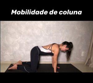 mobilidade-coluna-1