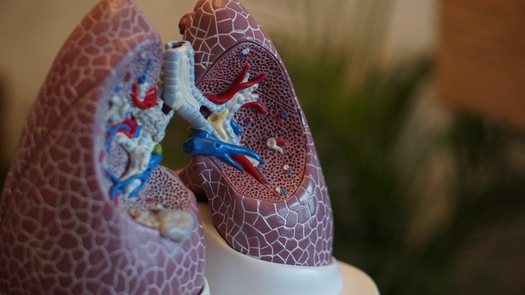 pulmão-complicações-respiratorias