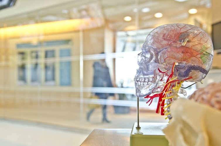 sistema-nervoso-e-lesões-neurais-resultantes-de-pontos-de-tensão