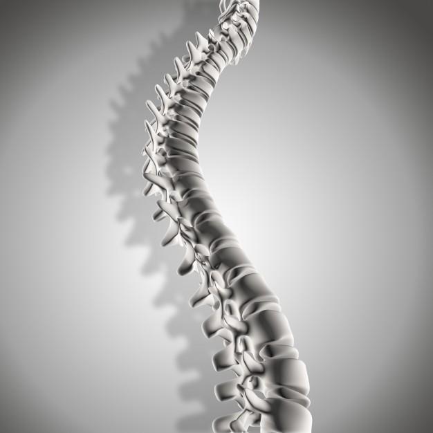 coluna-vertebral-dor-lombar